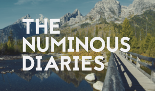 The Numinous Diaries – Video Series