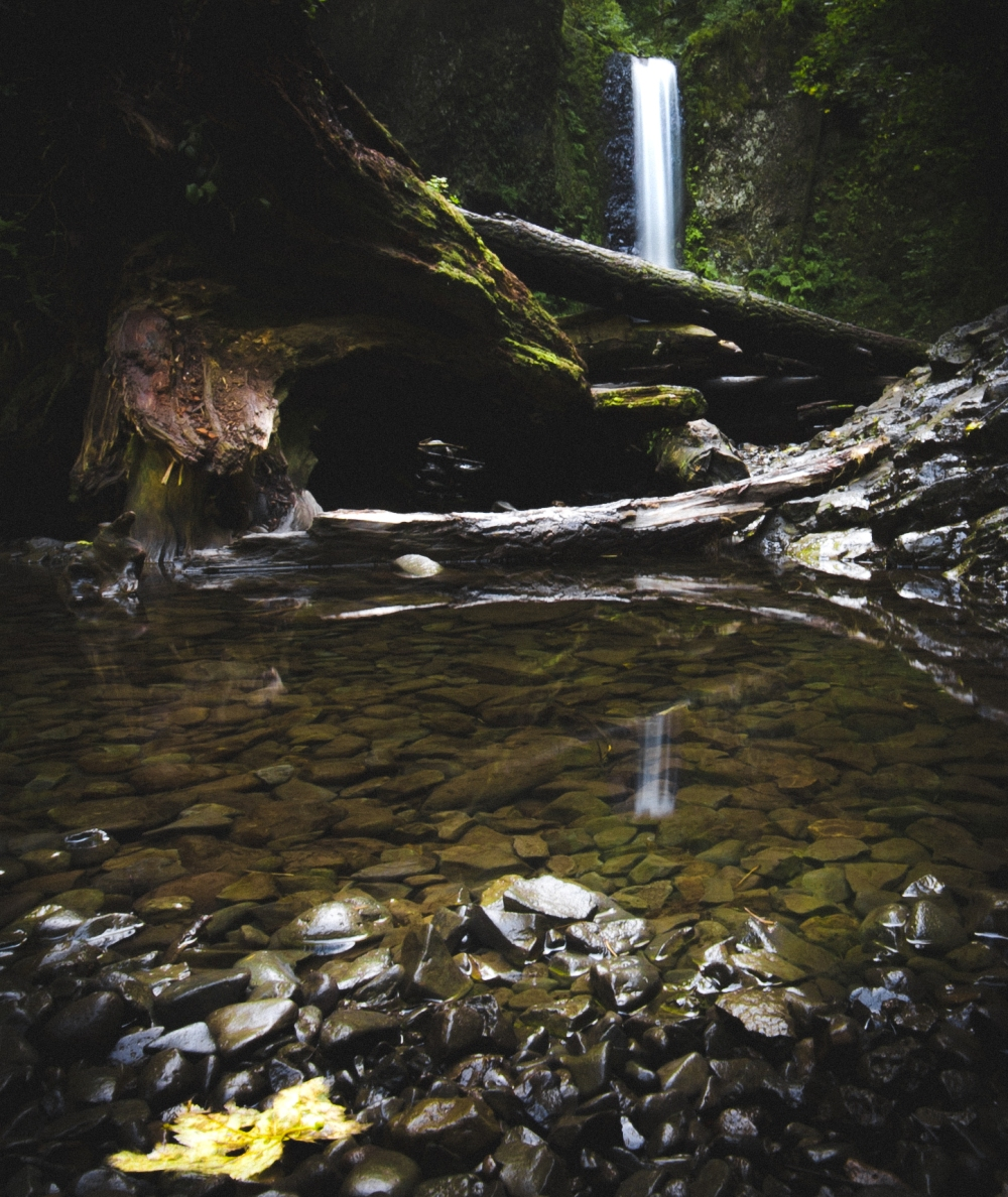 pd-oregon-waterfall-reflection-1-of-1